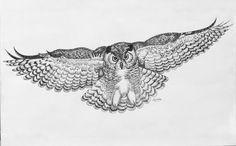 owl in flight | Owl In Flight Drawing by Carol Nistle - Owl In Flight Fine Art Prints ...