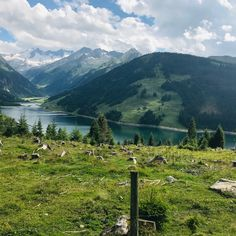 #tirol #gerlosstausee Mountains, Nature, Travel, Design, Ideas, Naturaleza, Viajes, Destinations, Bergen