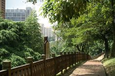 The most peaceful place I have ever been. Fort Canning Park, Singapore