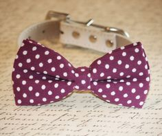 Raspberry Polka dots Dog Bow tie attach to dog collar, Raspberry pet wedding accessory,  dog collar, Pet Lovers, Cute, Unique gift idea on Etsy, $27.50