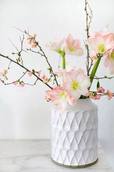 One of our favorite ways to instantly refresh a room? A floral arrangement that brings the beauty of the outdoors in. Click the link in our bio to learn how to create this Quince Branches and Amaryllis arrangement by Photo by Amarillis, Spring Projects, Flower Boxes, Faux Flowers, Crate And Barrel, Floral Arrangements, Floral Design, Diy Crafts, Table Decorations
