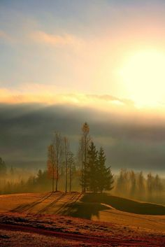 Sunrise in Lier, Buskerud Country, Norway.