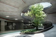Rampa #landscapearchitecturecourtyard