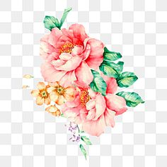 Leaf Clipart, Flower Clipart, Watercolor Flower Background, Floral Watercolor, Cv Original Design, Bouquet Noir, Leaf Border, Flower Ornaments, Flower Backgrounds