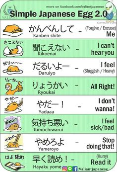 Learn Japanese for a real communication for your work, school project, and communicating with your Japanese mate properly. Many people think that Learning to speak Japanese language is more difficult than learning to write Japanese Japanese Egg, Study Japanese, Japanese Kanji, Japanese Culture, Learning Japanese, Japanese Quotes, Japanese Phrases, Hiragana, Japanese Language Lessons
