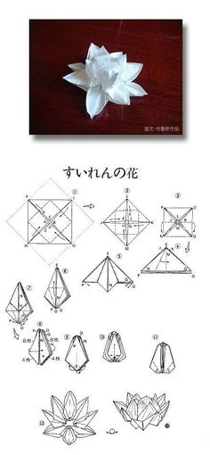 Origami Lotus Paper Flower Folding Instructions / Origami Instruction on imgfave