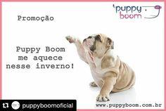 """Adoramos promoções e descontões!  .  Nossos leitores têm 10% de desconto na loja virtual da @puppyboomoficial. Basta digitar o código """"seubuldoguefrances"""" ao finalizar a compra no carrinho.  #Repost @puppyboomoficial (@get_repost)  Promoção:  A Puppy Boom me aquece nesse inverno! . .  Toda a Linha I.D com 50% de desconto! . . .  Aproveita e aqueça seu melhor amigo com qualidade de vida (o estoque é limitado). . . .  Acesse e descubra mais sobre nossas tecnologias e produtos…"""