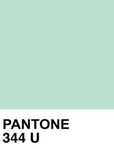 Ladies I know that mint is a difficult color so I thought I'd just pin this control pin so you can see the tone of mint. It is easily confused with aqua. ❤ Pantone Solid Uncoated