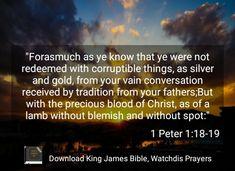Bible Qoutes, King Jesus, Fight The Good Fight, Heaven, Lord, Sky, Heavens, Paradise