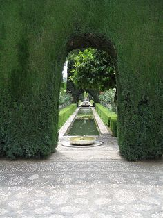 Gigantic garden topiary wall.