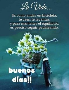 Weekday Quotes, Good Morning, Good Day Quotes, Powerful Quotes, Inspirational Quotes, Good Morning Quotes, Riding Bikes, Good Morning Friends, Good Day
