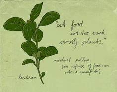 illustration by Celine Schroeder, quote by Michael Pollan