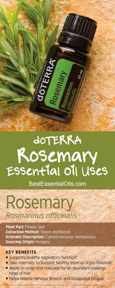 doTERRA Rosemary Essential Oil Uses