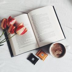 Book flatlay inspiration with coffee and botanical/organic elements/splash of color