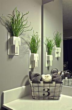 Quais são as plantas ideais para o banheiro? Confira no blog!
