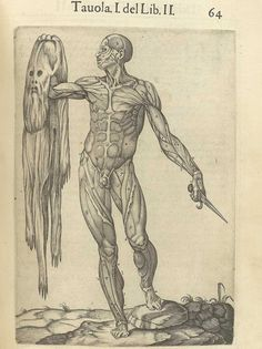 Juan Valverde de Amusco: Anatomia del corpo humano