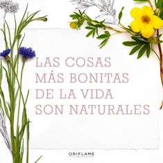 By Oriflame Cosmetics Oriflame Cosmetics, Eco Beauty, Projects, Lovers, Wellness, Frases, Facial Care, Skin Care, Beauty
