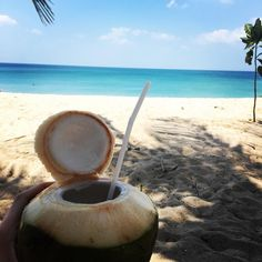 """#fresh and #cold #coconut at the #beach #lagunabeach #thailand #fun #smile #sea #iphone6sonly #southeastasia #followme #instacool #instalove #follow by nicklas_west Follow """"DIY iPhone 6/ 6S Cases/ Covers/ Sleeves"""" board on @cutephonecases http://ift.tt/1OCqEuZ to see more ways to add text add #Photography #Photographer #Photo #Photos #Picture #Pictures #Camera #Only #Pic #Pics to #iPhone6S Case/ Cover/ Sleeve"""