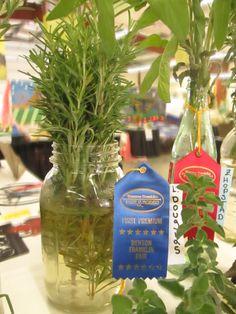 Fresh Herbs at Fair!