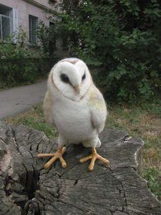 Life sized needle felted Barn owl