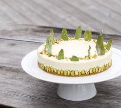Sorrel Pistachio Cheesecake