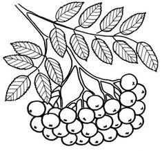 листья рябины трафареты