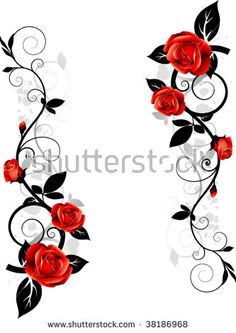 Vector floral design. Ornament with roses