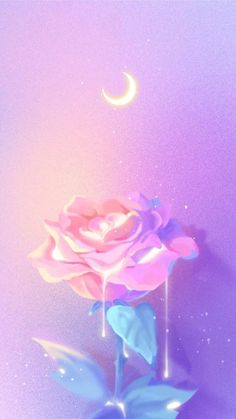 ideas flowers wallpaper quotes pink roses for 2019 Tumblr Wallpaper, Wallpaper Pastel, Cute Wallpaper Backgrounds, Pretty Wallpapers, Aesthetic Iphone Wallpaper, Flower Wallpaper, Nature Wallpaper, Cool Wallpaper, Aesthetic Wallpapers