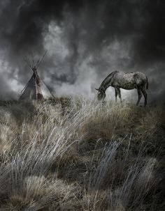 4099, by Peter Holme iii... #grass #clouds #frost #light #mule #sky #teepee #winter