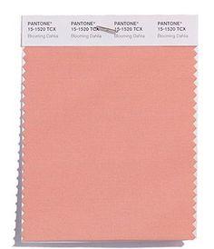 Color trend: Blooming Dahlia, PANTONE 15-1520