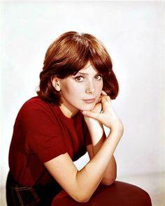 Catherine Deneuve 1960 (798×1000)