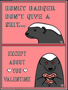 Happy Valentines Day from the Honey Badger