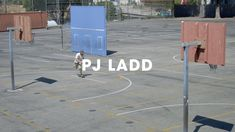 New Balance Numeric - The one and only PJ Ladd . Filmed by Luke MurphyTags: NB Numeric, Skate, PJ Ladd and Skateboarding