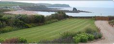 Devon Soil. Loam Topsoil for Turf, Flower Beds & Vegetables