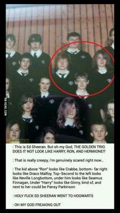 Ed Sheeran has a secret. Ed Sheeran has a secret.,Harry Potter Ed Sheeran has a secret. Memes Do Harry Potter, Harry Potter Pictures, Harry Potter Cast, Harry Potter Universal, Harry Potter Fandom, Harry Potter Characters, Potter Facts, Pansy Harry Potter, Harry Potter Conspiracy Theories