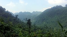 Phong Nha-Ke Bang Nationalpark  - mehr bei RutisReisen: Vietnam in 15 Tagen - Stationen zweier Flashpacker