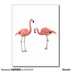 "The superior product ""of flamingo"" postcard"