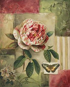 Trademark Global Lisa Audit 'Rose and Butterfly' Canvas Art - 24 x 18 x 2 Art Vintage, Vintage Paper, Vintage Prints, Vintage Images, Stretched Canvas Prints, Framed Art Prints, Framed Artwork, Wall Art, Butterfly Canvas