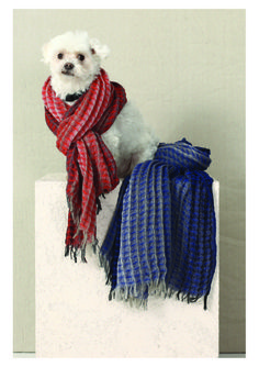 Chookie shows us how to model winters new scarf.