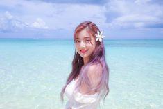Twice (JYP Ent) achtergrond entitled Jihyo 'Dance the Night Away' behind Nayeon, Kpop Girl Groups, Korean Girl Groups, Kpop Girls, Fandom, Park Ji Soo, Twice Jyp, Jihyo Twice, Shared Folder