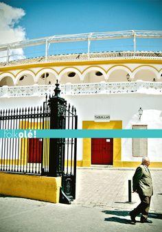 Postcard from Seville  La Maestranza