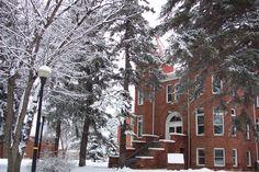 When it snows, campus becomes a winter wonderland.