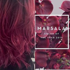 matches the color of the year #Marsala check her out #red #magenta #haircolor