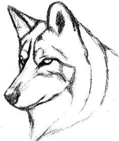 Картинки по запросу рисунки карандашом