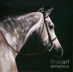 Horse painting by Janet Crawford