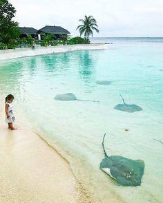 Jumeirah Vittaveli #Maldives #MaldivesHoliday