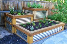 Off-Grid Home Sweet Home: Backyard Herb Garden...