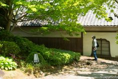 Japaninfo added 38 new photos to the album: โบตั๋น กุหลาบพันปี วิสทีเรีย@วัด Taima-dera,Nara/วันที่ 28 เมษา — at 當麻寺中之坊(当麻寺中之坊).