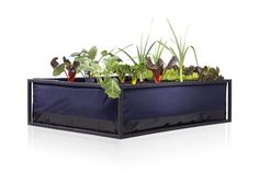 Noocity Growbed For those with big ideas and a huge desire to get productive quickly, the Noocity Growbed large (125x125x35cm) is the perfect solution!  The sub-irrigation system, embedded in the Noocity Growbed, is designed to help you save time and water. With the Noocity Growbed your crops won't need constant watering as our technology has proven to consume