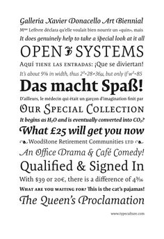 Expo Serif Pro (Mark Jamra, TypeCulture) 2008